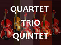 LP recordings of Trios Quartets and Quintets and larger chamber music ensembles